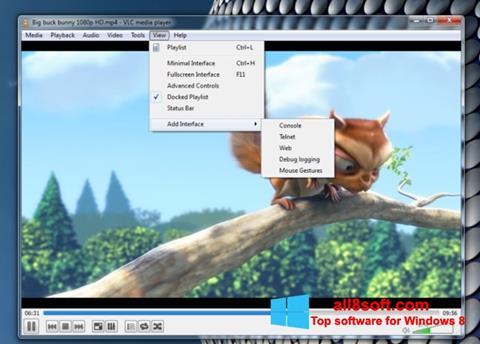 Skärmdump VLC Media Player för Windows 8